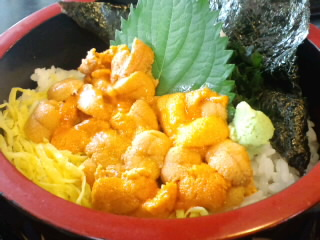 萩しーまーと「来萩」の生ウニ丼